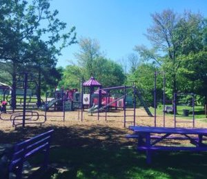 Ryanne Cara Playground
