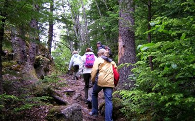 People hiking through the woods at Rip Van Winkle Campgrounds