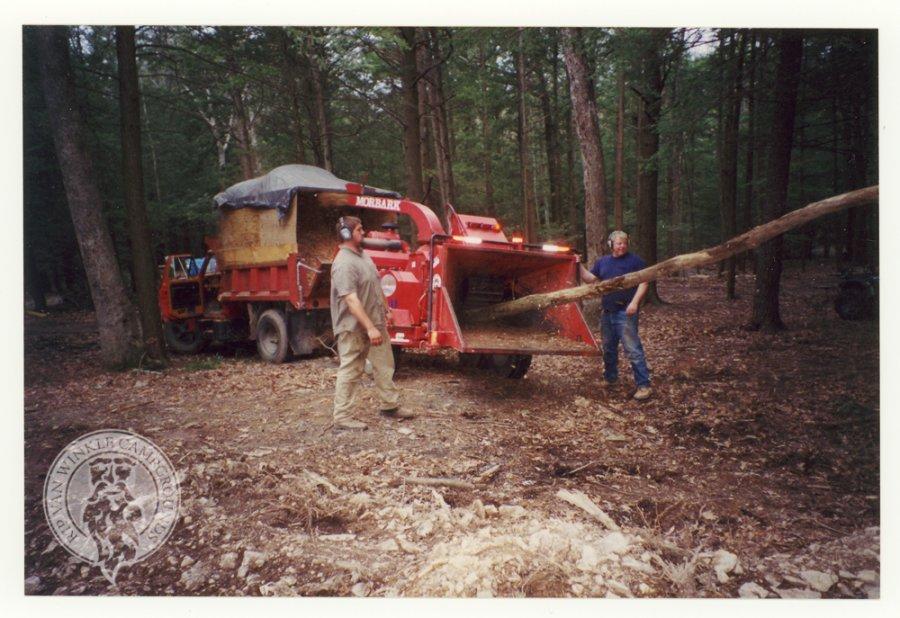 Quick! Look at the wood chucks!