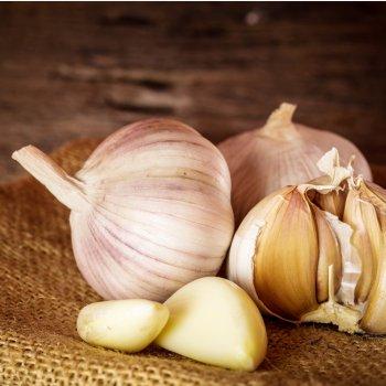 Garlic Bulbs - Hudson Valley Garlic Festival
